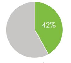 42 percent pie chart